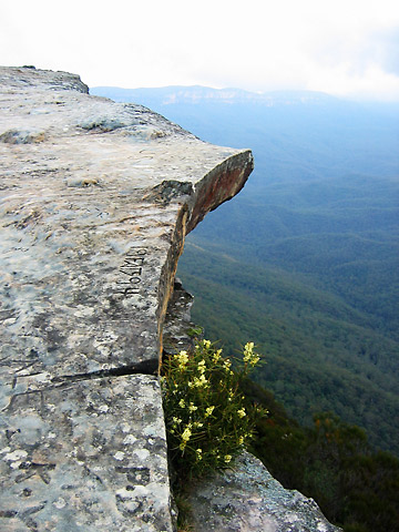 view of the Blue Mountains from a lookout ledge