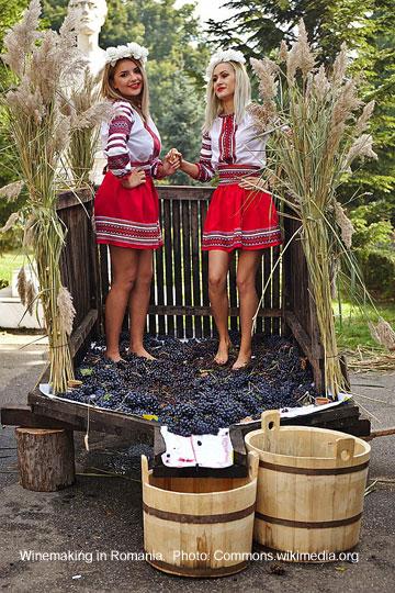 Romanian Winemaking