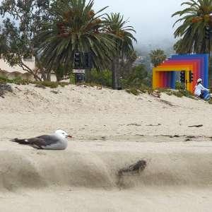 beach in Santa Barbara near Fess Parker
