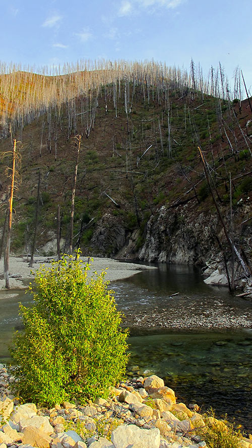 gravel road to Atlanta running along the Middle Fork Boise River