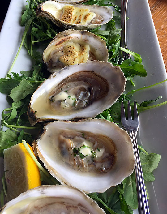 oysters at David's KPT restaurant