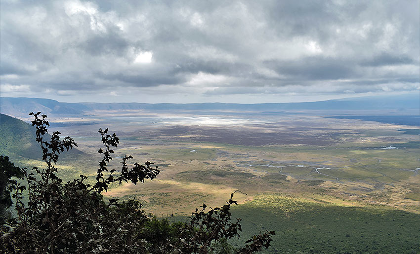 panoramic view of Ngorongoro Conservation Area
