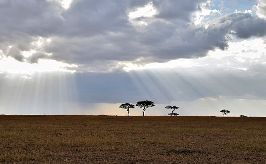 Serengeti skyline