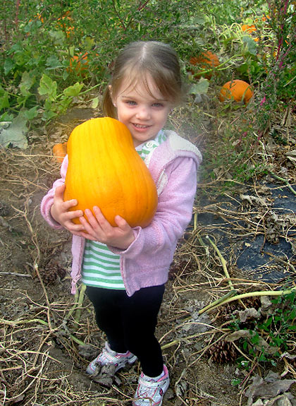 3-year old girl carries off her Halloween pumpkin at Walter's Fruit Ranch