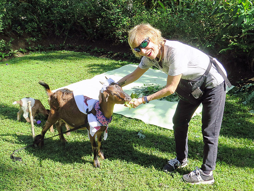 Betty the goat with the writer