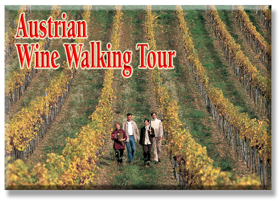 Austrian Wine Walking Tour