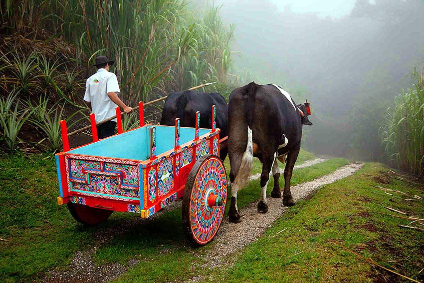 Costa Rica rural scene
