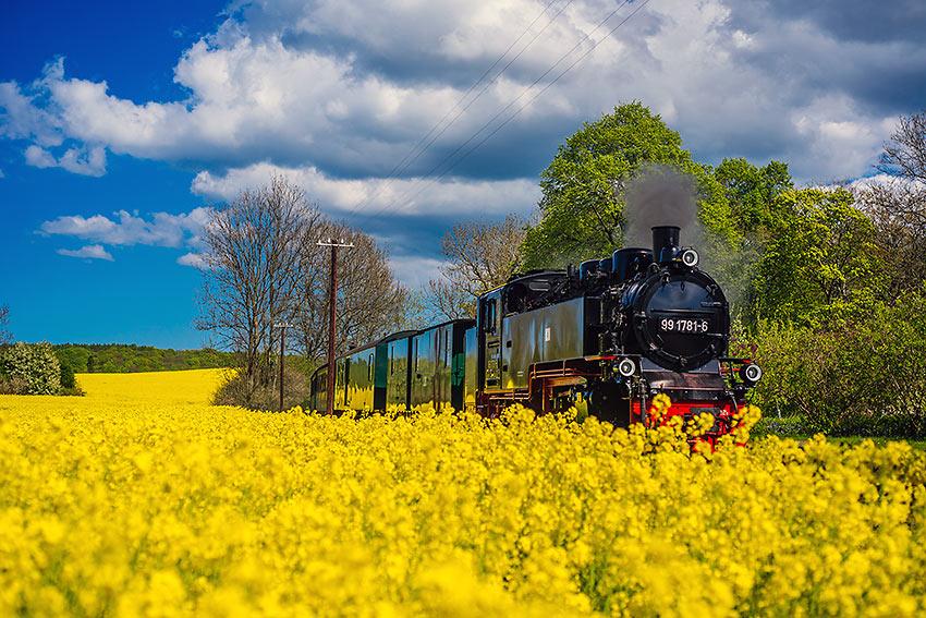 Rasender Roland Train