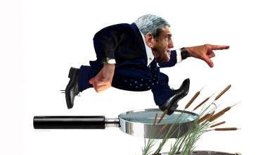 Robert Mueller: Into the Swamp, by Nancy Ohanian