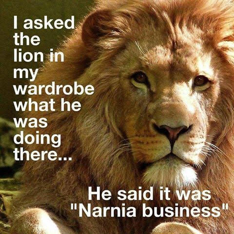 Narnia Business