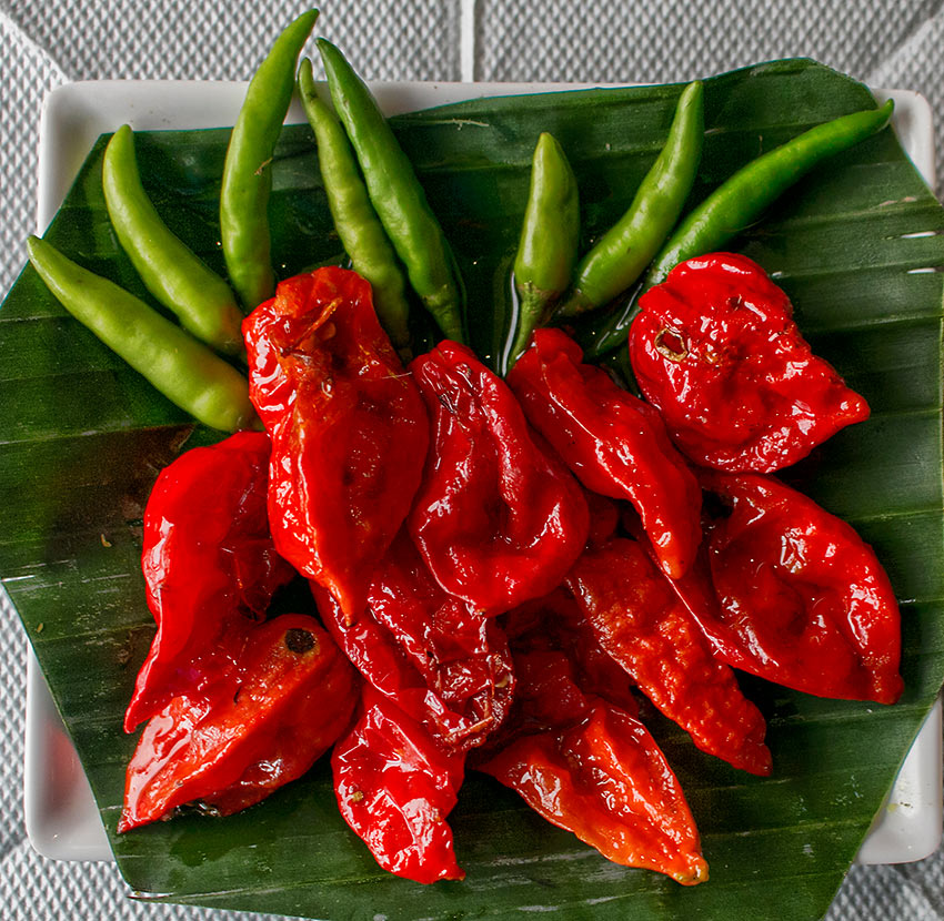 Bhut Jolokia or Ghost Peppers