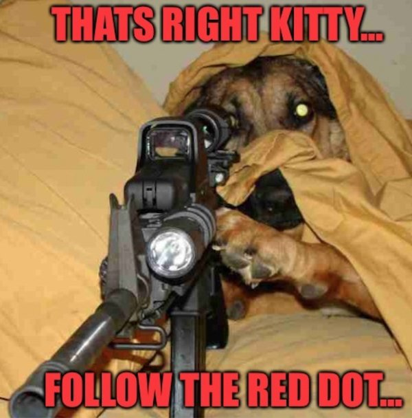 Parting Shot: Follow the Red Dot