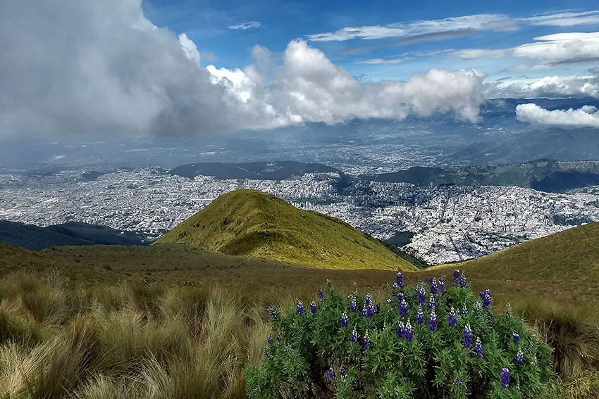 view of Quito from the base of Pichincha Volcano