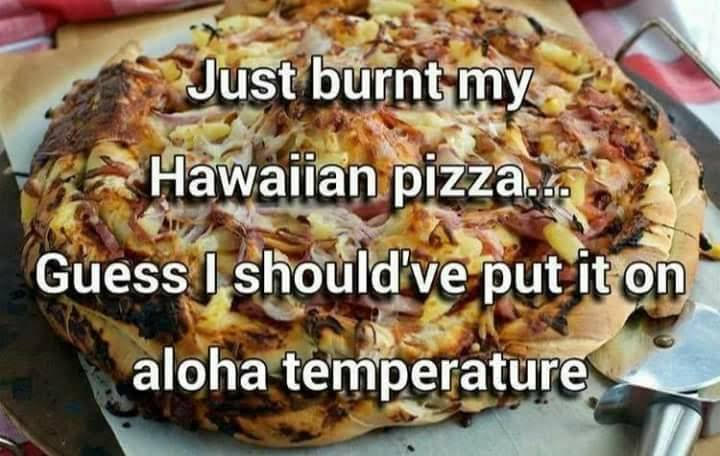 Don's Puns: Aloha Temperature