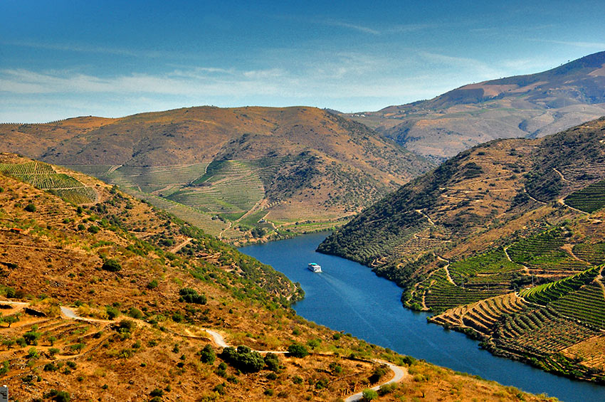 vineyards along the steep banks of Portugal's Douro River