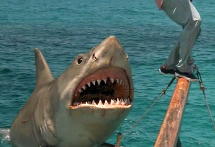 a scene from Jaws IV