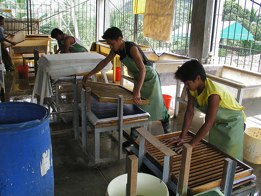 preparing paper products from abaca or from banana plant fibers