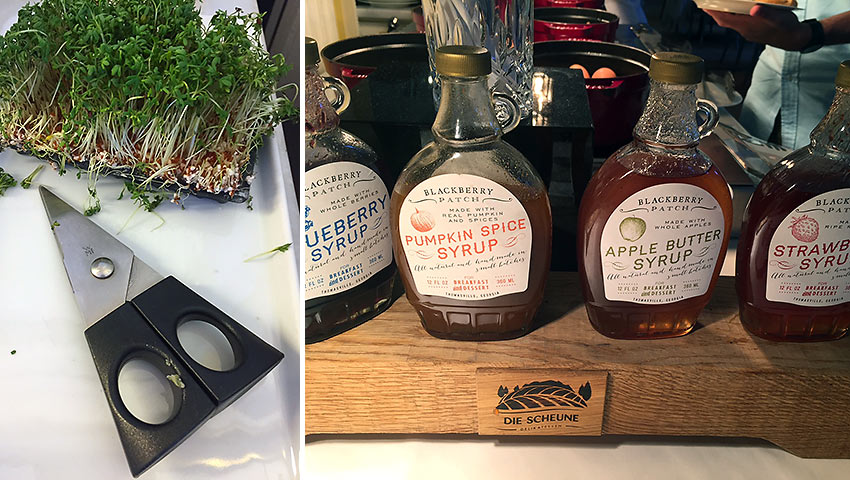 herb sprouts with scissors and different bottles of pancake syrup