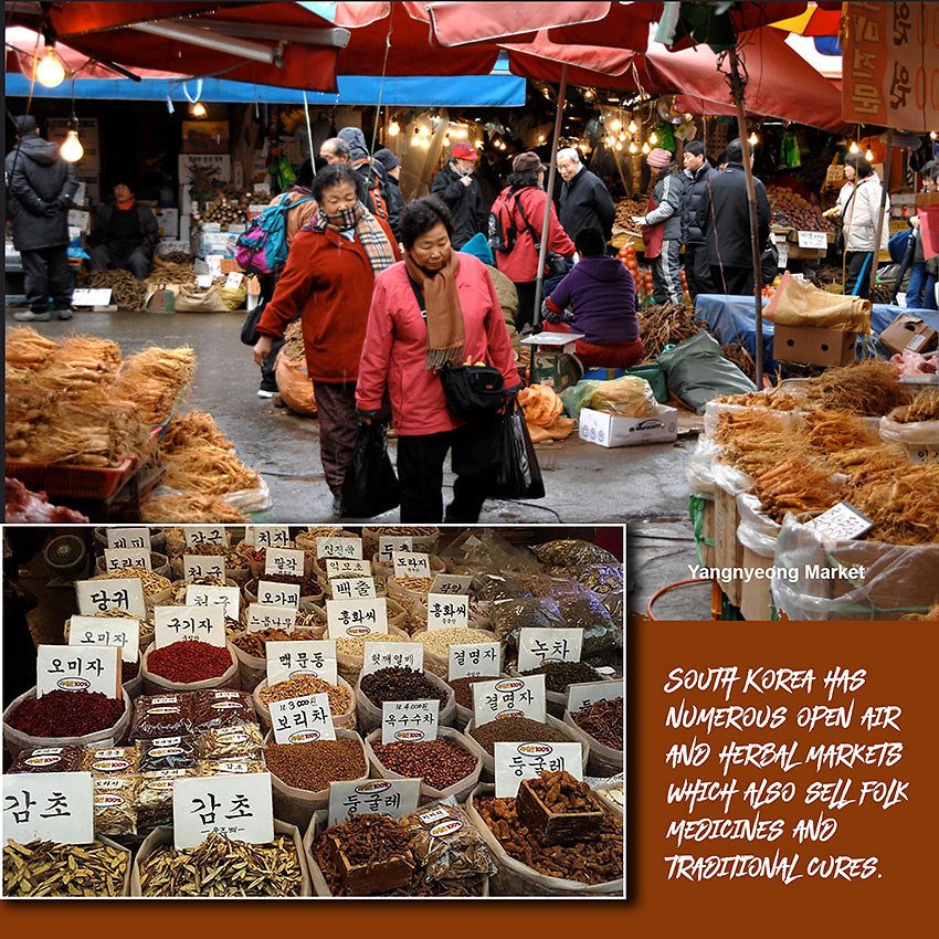 Korean herbal markets