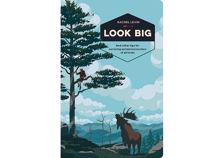 Look Big blook cover
