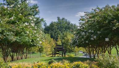 internationally recognized Loudoun County horse country