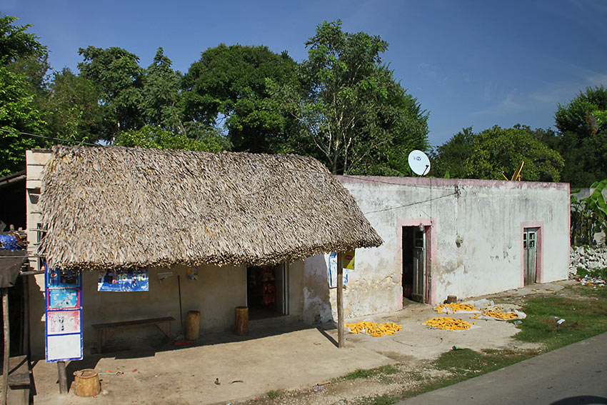 simple modern-day Maya village, with maize drying in the sun