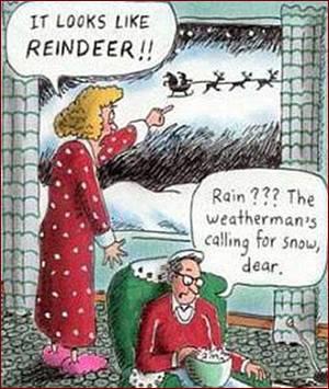 Don's Puns: Rain Dear