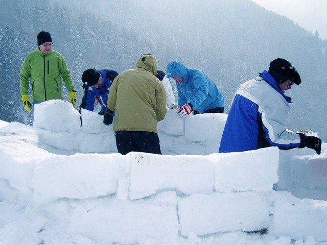 Parting Shots: building Canada's border wall