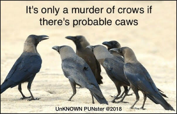 Don's Puns: Caws