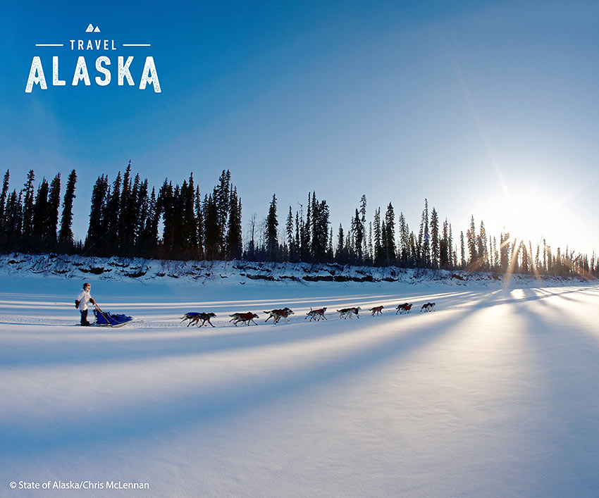 dog mushing in Alaska