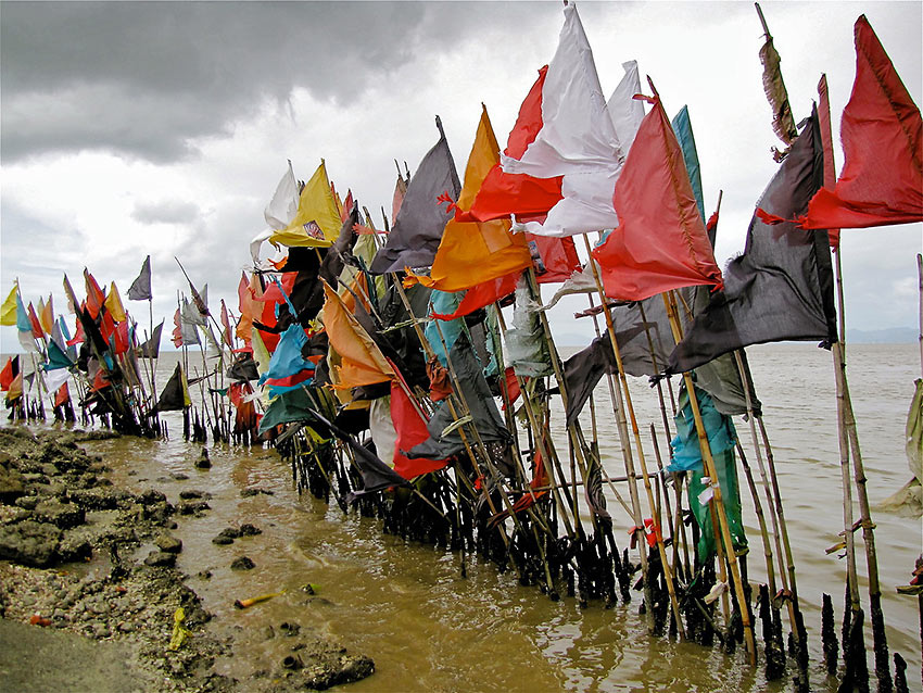 bamboo poles with flags used as markers