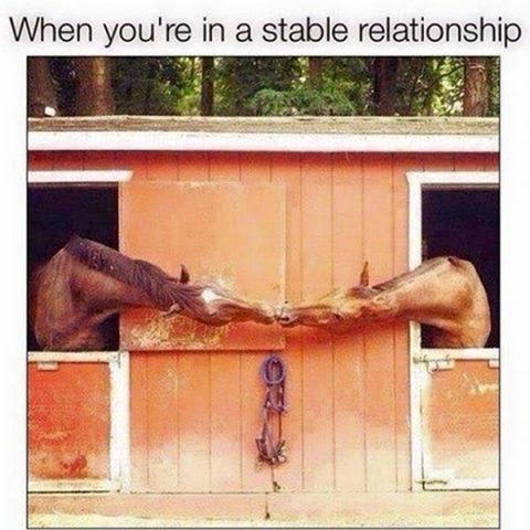 Don' Puns: Stable Relationship