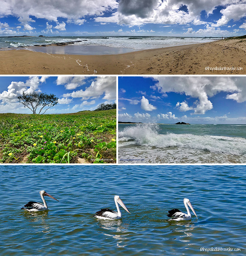 beaches and Pelican Waters, Queensland's Sunshine Coast