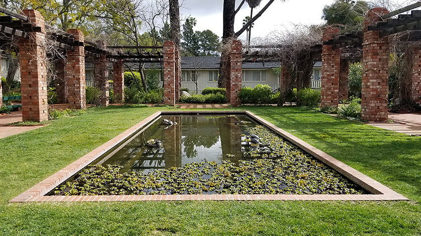 lily pond with turtles, Belmond El Encanto