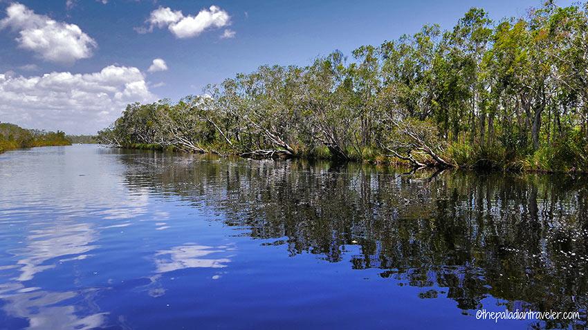Noosa Everglades, Sunshine Coast, Australia