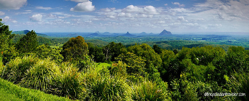 Mary Carincross Scenic Reserve with the Glasshouse Mountains in the background