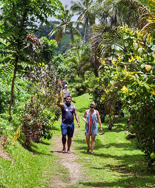 half-mile walk to Tavoro Falls, Taveuni