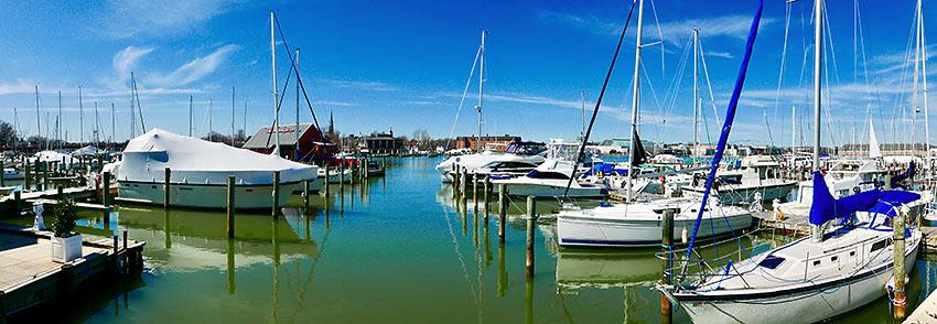 yachts at Annapolis Harbor