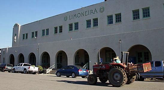 historic Limoneira