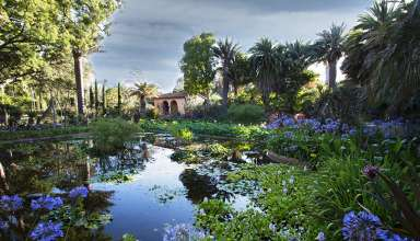 the garden at Lotusland, Santa Barbara, CA