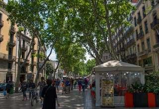 pedestrian street Las Ramblas, Barcelona