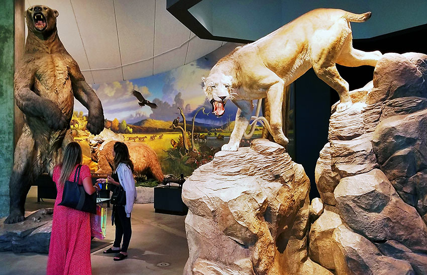 replicas of a giant Ice Age bear and a saber tooth cat, La Brea Tar Pits