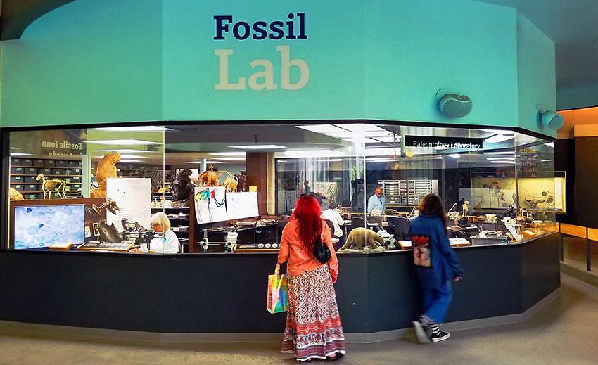 working fossil lab, La Brea Tar Pits