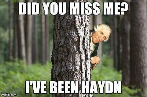 Don's puns: Been Haydn