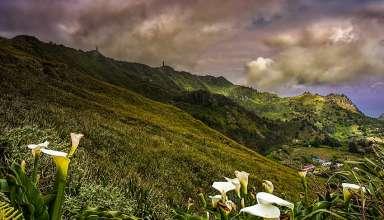 Diana's Peak National Park, St. Helena