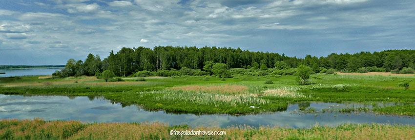 wetlands scene, Russia