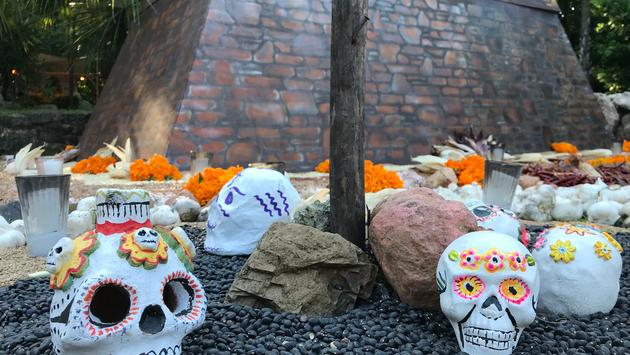 'calaveras' displayed on the Day of the Dead, Riviera Maya