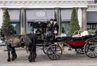 horse carriage at the Hotel d'Angleterre