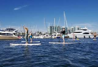 stand-up paddle boarding at Marina del Rey