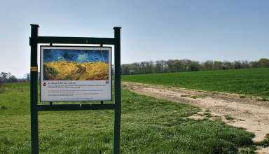location where van Gogh painted Crows over Wheatfield